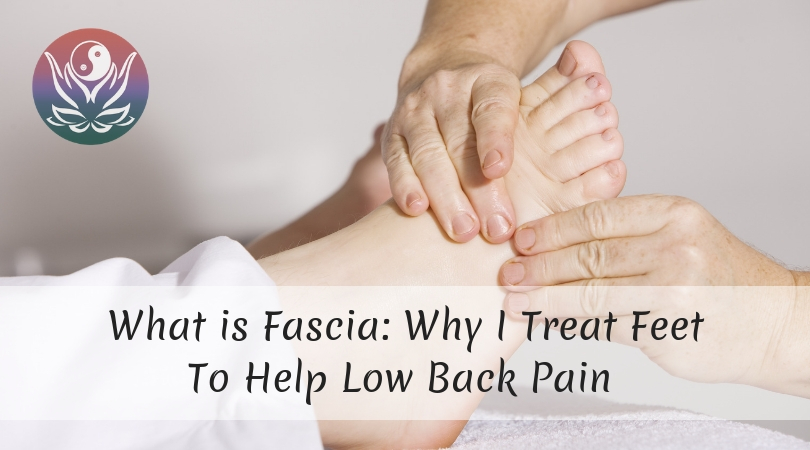 Featured Image What is Fascia
